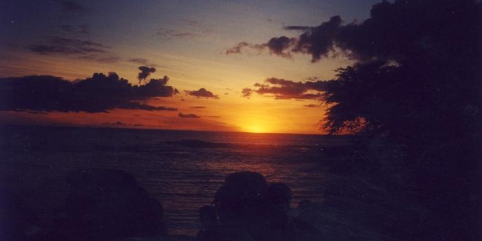 hawai206